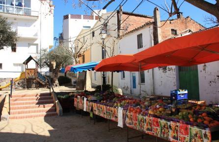 Parada de truta en Sant Iscle de Vallalta