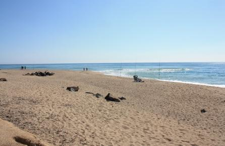 Playa de Santa Susanna